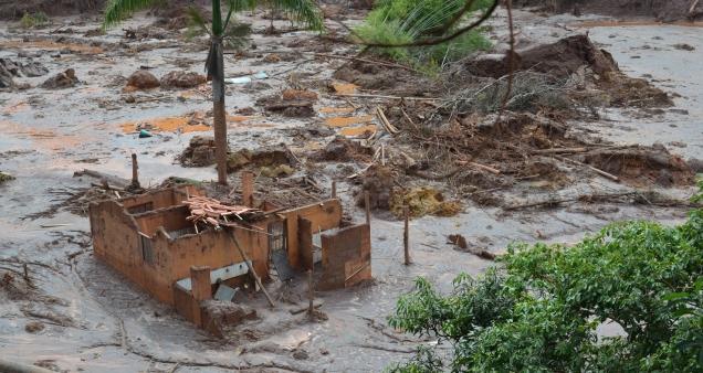 Propriedades rurais na comunidade de Camargos, em Mariana, atingidas pela barragem.