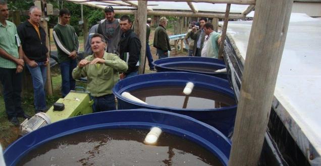 Reúso da água no processamento de café, um dos 70 projetos selecionados para a mostra, é aplicado em propriedades cafeeiras de Minas Gerais e Espírito Santo. Foto: Divulgação EPAMIG