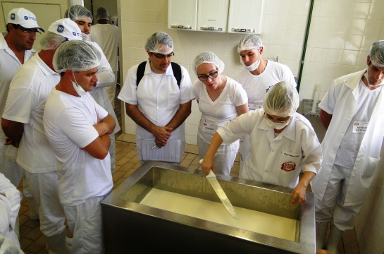 Curso de queijos é um dos mais procurados