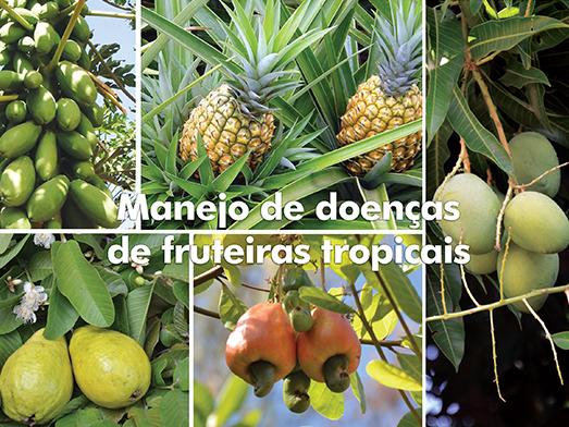 Blog - Manejo de doenças de fruteiras tropicais