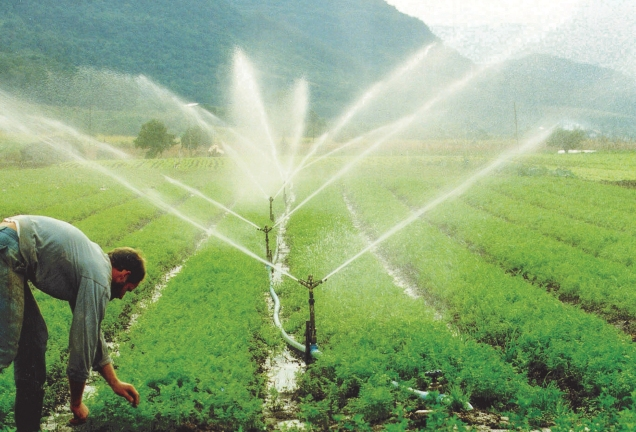epamig-ira-apresentar-conjunto-padronizado-que-pode-ajudar-o-pequeno-agricultor-a-implantar-um-sistema-mais-simples-em-sua-lavoura