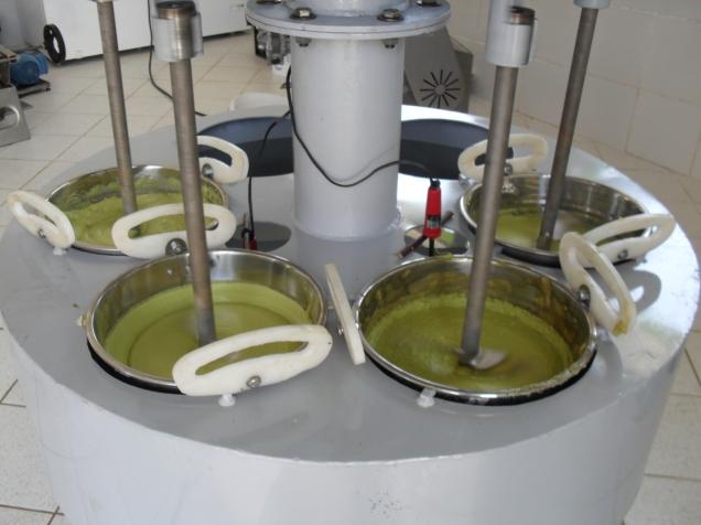 sam_0880-extracao-do-azeite-de-abacate-foto-adelson-de-oliveira