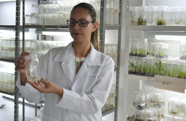 DSC_0168- Banco de germoplasma da palma forrageira também terá materiais conversados em laboratório de biotecnologia(1)