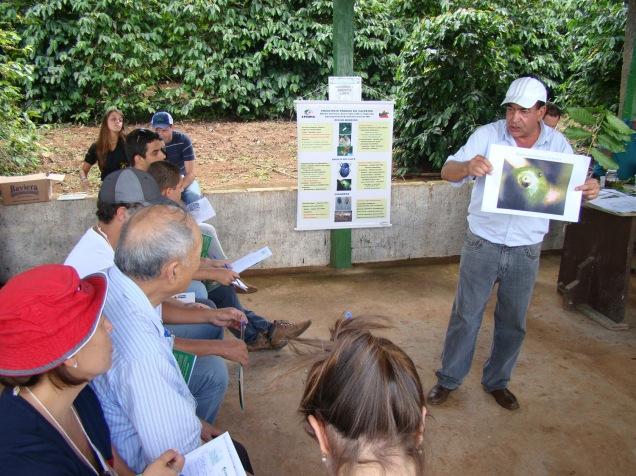 foto 4 - pesquisador júlio souza apresentou alternativas para reconhecimento e controle da broca do cafeeiro