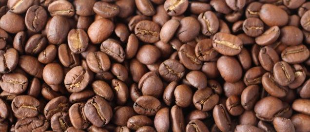 café Torrado Paraiso 2 (4)