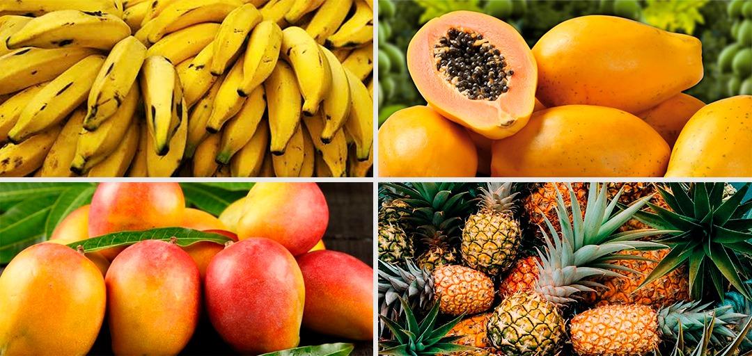 Região do Jaíba é identificada como importante produtora de frutas em Minas