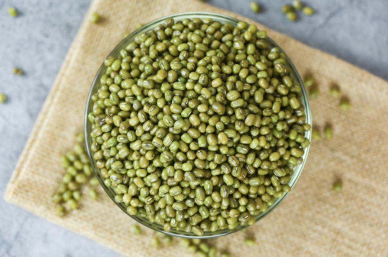 EPAMIG lança cultivares de feijão mungo-verde que agradam mercado externo