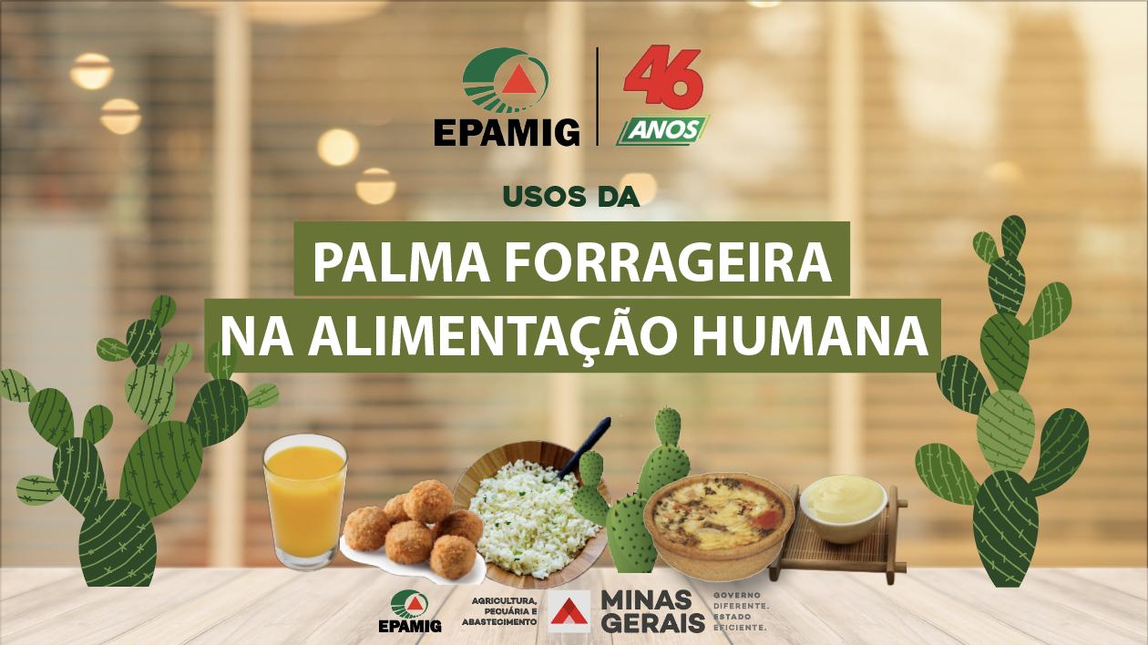 Possibilidades da palma forrageira para alimentação humana