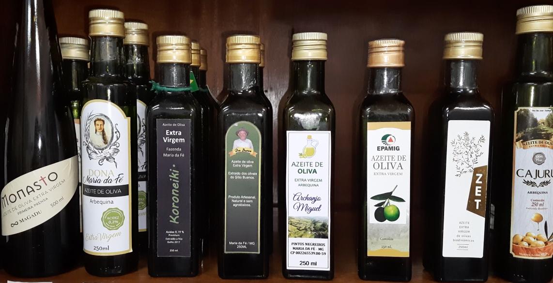 Azeitech vai reunir a cadeia produtiva da olivicultura