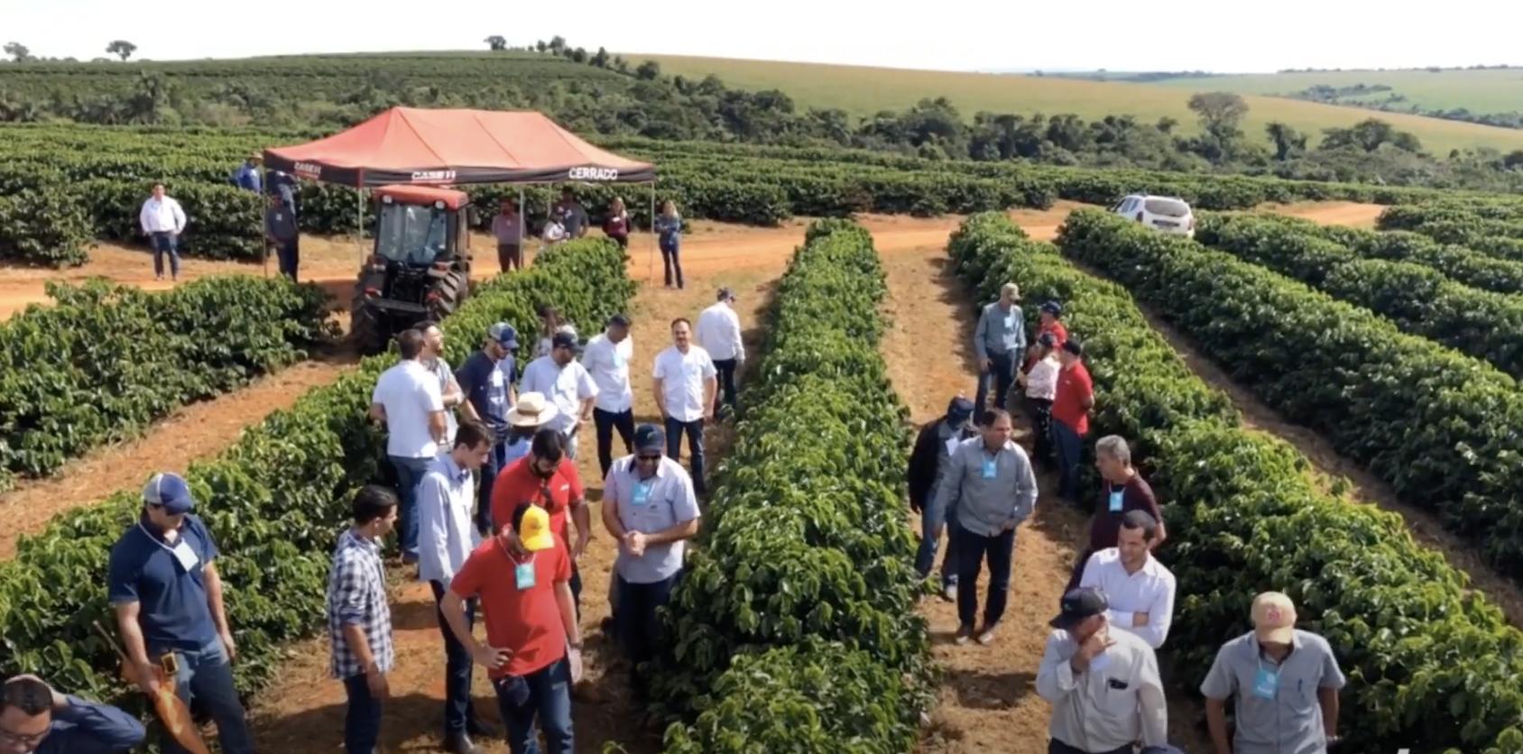 Projeto da EPAMIG vai transformar a cafeicultura em Minas Gerais